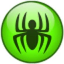 Spider Player icon