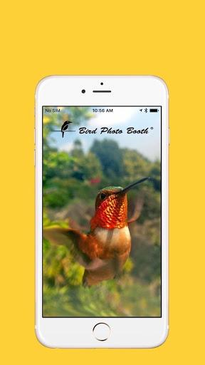 Bird Photo Booth 1.0.1 preview 2